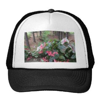 Botanical Series Cap