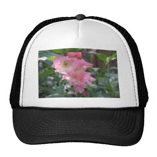 Botanical Series Mesh Hats