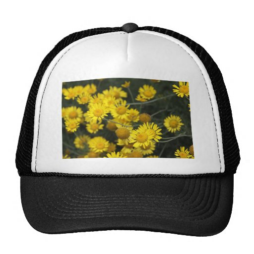 Botanical Series Mesh Hat