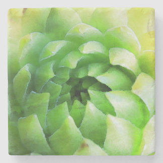 Botanical Tile Coaster