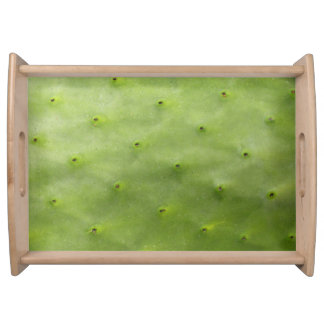 Botanical Tropical Green Cactus Photo Serving Tray