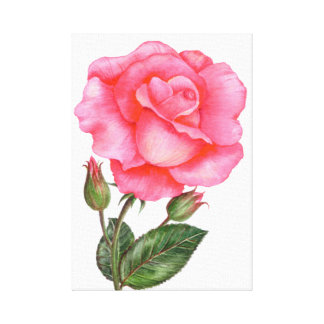 Botanical Wall Art Pink Rose Floral Art Flower