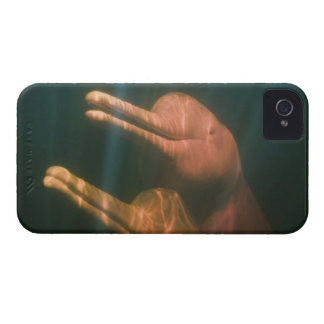 Boto, or Amazon River Dolphin (Inia geoffrensis) Case-Mate iPhone 4 Cases