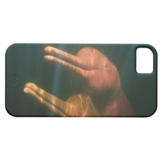 Boto, or Amazon River Dolphin (Inia geoffrensis) iPhone 5 Covers