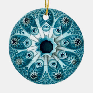 Botryllus polycyclus Ernst Haeckel Fine Art Ceramic Ornament