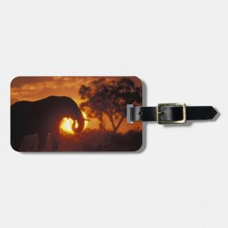 Botswana, Chobe National Park, Bull Elephant Luggage Tag