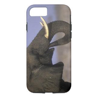 Botswana, Moremi Game Reserve, Bull Elephant iPhone 7 Case