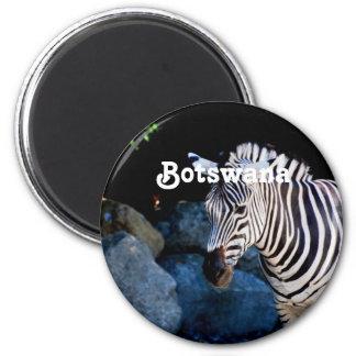 Botswana Zebra Magnet
