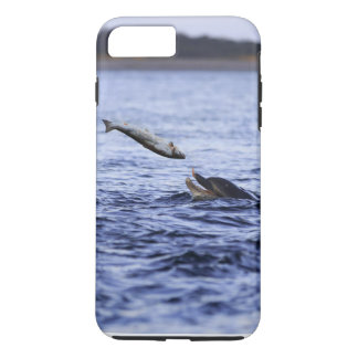 Bottle Nose dolphin eating a large salmon iPhone 7 Plus Case