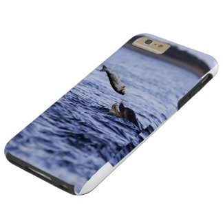 Bottle Nose dolphin eating a large salmon Tough iPhone 6 Plus Case