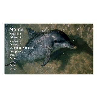 Bottle-nosed dolphin business cards
