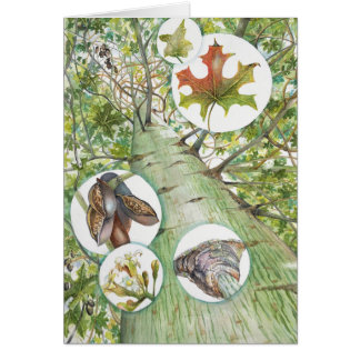 "Bottle Tree Greeting Card (5"" x 7"") with Envelope"