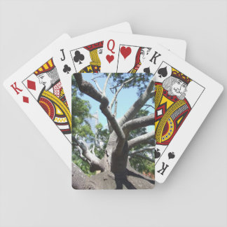 Bottle Tree Playing Cards