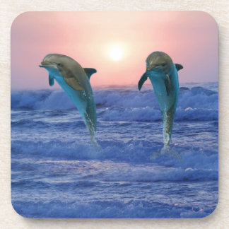 Bottlenose Dolphin at Sunrise Coaster