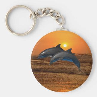 Bottlenose Dolphin at Sunset Key Ring