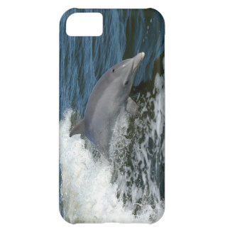 Bottlenose Dolphin Cover For iPhone 5C