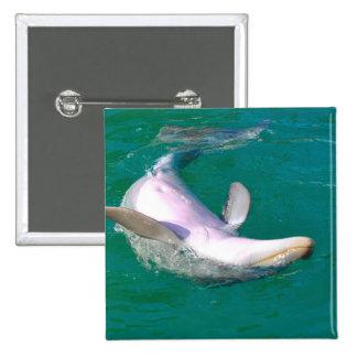 Bottlenose Dolphin Upside Down 15 Cm Square Badge