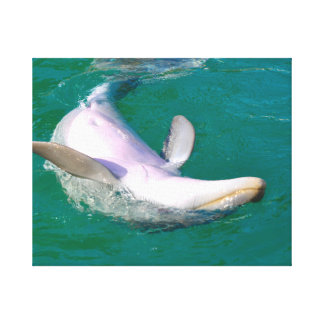 Bottlenose Dolphin Upside Down Canvas Print