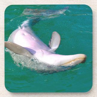 Bottlenose Dolphin Upside Down Drink Coaster