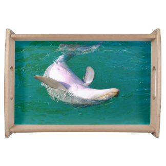 Bottlenose Dolphin Upside Down Serving Tray