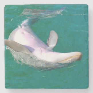 Bottlenose Dolphin Upside Down Stone Beverage Coaster