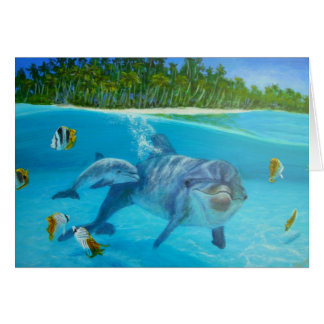 bottlenose dolphin with baby card