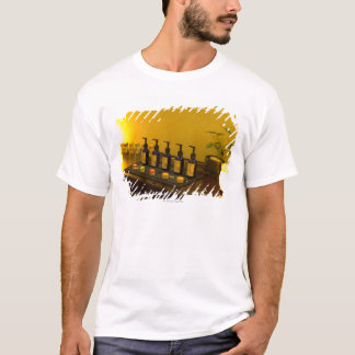 Bottles of aromatherapy oil in the beauty salon, T-Shirt
