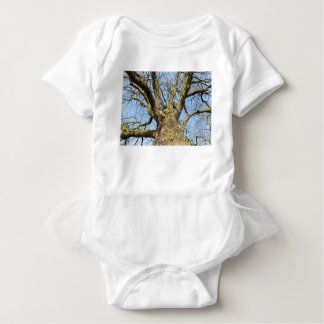 Bottom view oak tree without leaves in winter baby bodysuit