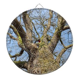Bottom view oak tree without leaves in winter dartboard