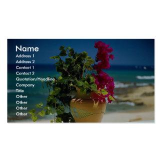 Bougainvillea, Baja, Mexico Business Card
