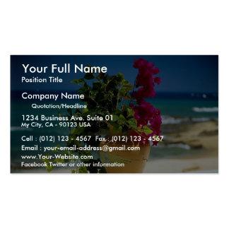 Bougainvillea, Baja, Mexico Business Cards