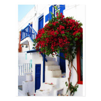 Bougainvillea growing outside a house, Mykonos Postcard