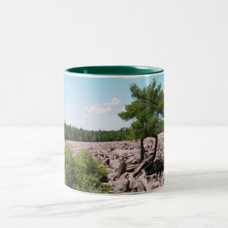 Boulder Field Two-Tone Coffee Mug