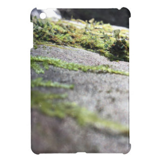 Boulder Lichen Case For The iPad Mini