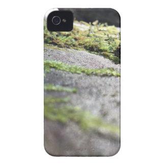 Boulder Lichen iPhone 4 Cover