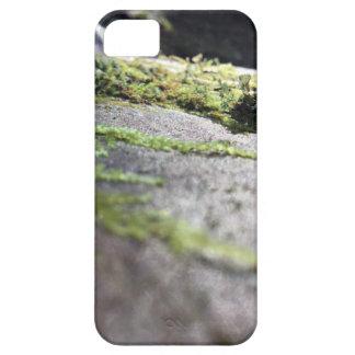 Boulder Lichen iPhone 5 Cases