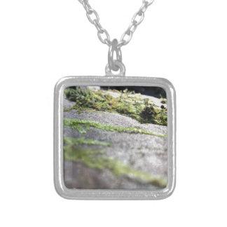 Boulder Lichen Silver Plated Necklace
