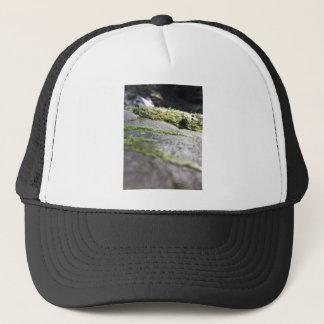 Boulder Lichen Trucker Hat