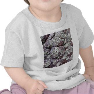 Bouldered Rocks with Lichen Moss Shirts