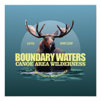 Boundary Waters CAW (Moose) WT