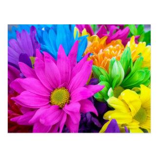 Bountiful Flowers Postcard