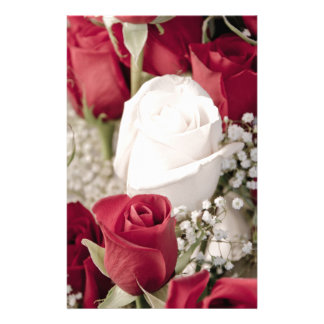 bouquet of red roses with one white rose in center stationery paper
