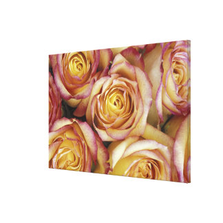 Bouquet of roses stretched canvas prints