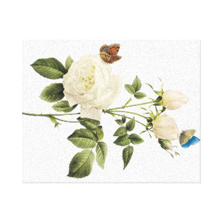 Bouquet of White Roses with Butterflies Canvas Gallery Wrapped Canvas