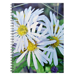 Bouquet of Wild White and Yellow Daisies Note Books