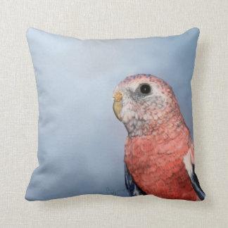 Bourke's Parrot Pillow