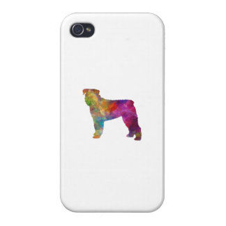 Bouvier DES Flanders in watercolor iPhone 4/4S Cases