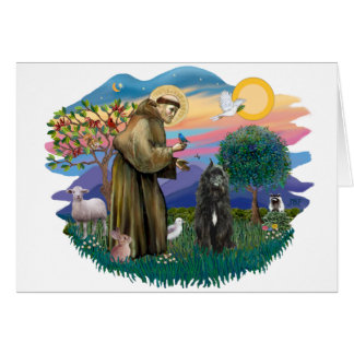 Bouvier des Flandres (black) Card