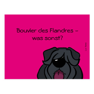 Bouvier of the Flandres - which otherwise? Postcard