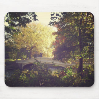 Bow Bridge Framed By Trees,Central Park, NYC Mouse Pad